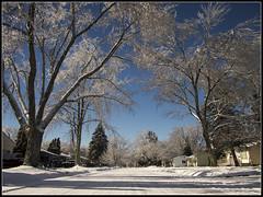 My street (JoshFarewell) Tags: winter snow cold ice michigan olympus panasonic icestorm 14mm mft 2013 microfourthirds epm1