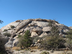Exfoliating monzogranite dome (Joshua Tree National Park) Tags: rock nationalpark joshuatree erosion dome geology joshuatreenationalpark exfoliating monzogranite
