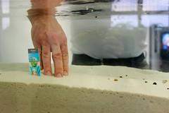 FS1 Aquarium
