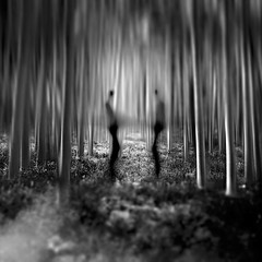 Tête–à–tête (ShanePix) Tags: forest trees people man shadow aspen fog black white light night conversation scary bushes branches leaves dark ghosts moonlight monochrome blackandwhite apooky