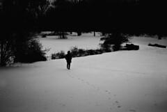 R1-017-7 (David Swift Photography Thanks for 22 million view) Tags: davidswiftphotography doylestown pennsylvania footstepsinthesnow walkinginsnow snow forrest winter candidphotos 35mm winterscene film nikonfm2 ilfordxp2