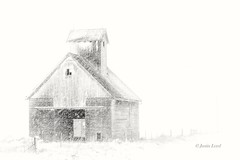Snow Storm (Justin Loyd Photography) Tags: highkey bnw blackwhite monochrome minimalist snow rural iowa whiteout white blizzard winter february friday farmstead farm farmyard fade canon 6d 24105l eos photography picture sketch ngc