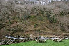 2JAC3343_exmoor_170313 (_husky_) Tags: devon exmoor exmoornationalpark fuji1655 fujixt1 nationaltrust somerset watersmeet
