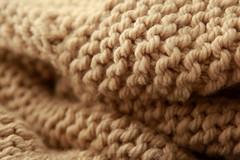 softness (delphine imbert) Tags: tricotage laine camel douceur confort