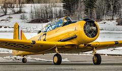 P1370189-Edit_LR.jpg (daniel523) Tags: flying warbird gatineau vintagewingscanada harvard cynd