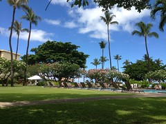 Maui 2013 (jorge_dfw) Tags: ocean road sea beach island hawaii hotel harbor tour maui hana lahaina trilogy