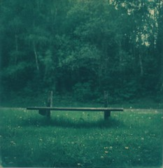 Backless bench borderless (L. McG.-E.) Tags: film polaroid sx70 instant analogue px70 impossibleproject colorprotection