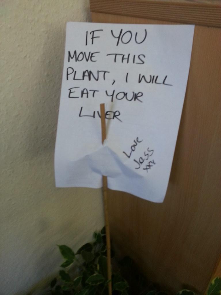 Move this plant and i will eat your liver. Love Jess xx