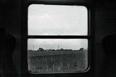 Venetian Country - Sulla Transveneziana (Antonio Ferraroni) Tags: travel blackandwhite bw white black station contrast train 35mm 50mm blackwhite campagna 400 hp5 f2 12 quartz ml venezia stazione treno ilford yashica trenitalia binari analogic veneto fxd viaggiare 2013