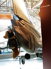 I'm a  Rather Battered Bear (Steve Taylor (Photography)) Tags: bear newzealand christchurch wheel museum scarf plane earthquake teddy aircraft tail pillar wing jet canterbury dent nz quake southisland column bent damaged section struts crumpled supports undercarriage swung buckled wigram