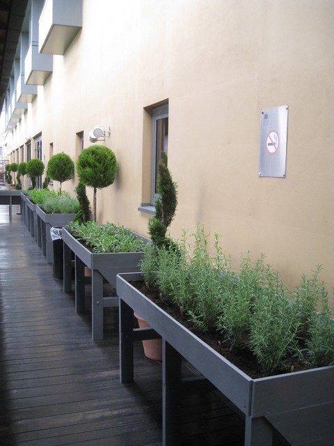 "The herb garden on the Royal Opera House roof terrace. <a href=""http://www.roh.org.uk/visit/restaurants-and-bars"" rel=""nofollow"">www.roh.org.uk/visit/restaurants-and-bars</a>"
