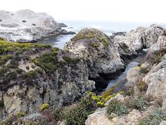 Bird Island, Point Lobos (pr0digie) Tags: california statepark carmel pointlobos birdisland