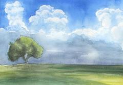 L'albero e il cielo - acquerello su carta - cm 15x20