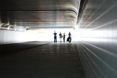 tunnel vision 1 (maartenneven) Tags: station rotterdam tunnel centraal provenierstunnel
