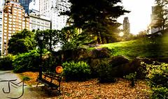 Break (buteos) Tags: park york blue sky ny newyork tree green smile bike azul buildings happy colombia break unitedstates walk centralpark manhattan seat cielo enjoy soon eeuu jmf