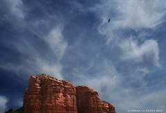Sedona, Arizona (Chris Jude Lupetti) Tags: sky bird fly photo grandcanyon sedona fineartphotography lupetti fineartphotographs chrislupetti flickrartphotographs