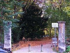 Leopoldpark Haupteingang (wolfgraebel) Tags: park street autumn fall leaves wall munich mnchen grid graffiti george bush herbst wiese grau stefan portal tor shrub der wald bltter tr strauch busch tristesse trist mauer gitter pflaster nach lese schwabing verwittert pforte maxvorstadt gehsteig strase friedrichstrase
