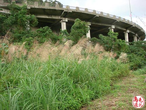 山水綠生態公園 (7).jpg