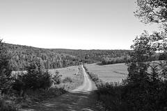 Matapedia, Quebec, Canada (bm^) Tags: park ca travel trees blackandwhite bw white canada tree field zeiss blackwhite nikon quebec zwartwit reis carl zwart wit veld reizen matapedia blackwhitephotos d700 zf2 nikond700 начинизавиждане distagon282zf distagont228