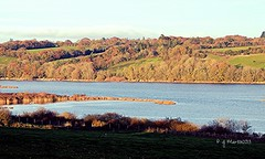 River Slaney at Bellevue Ballyhogue Co Wexford Dec 2013 (dandy70) Tags: autumn landscape hillside greenfields riverslaney slaneyvalley ballyhogue picofriverslaney wexfordlandscape wexfordscenery riverslaneyinwexford bellevuecowexford autumsunshineinbellevuecowexford pjmartinphotos