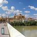 Roman bridge of Córdoba_9