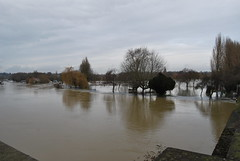 Christchurch Meadow from Reading Bridge (Ibrahim_D) Tags: water flood riverthames readingbridge