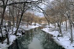 The Bronx River (Eddie C3) Tags: newyorkcity snow nature sunny rivers bronxzoo snowday winterlandscapes natureinthecity bronxriver naturewalks nikond7000