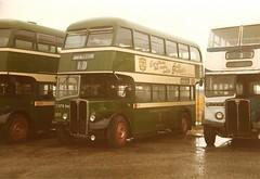 ( Preserved ) . Nottingham City Transport . 266 XTO266  . Bus Rally . (AndrewHA's) Tags: city nottingham bus rain rally transport v regent parkroyal aec 266 preservedbus xto266