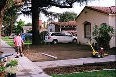 04560013-84 (jjldickinson) Tags: plant garden aloe landscaping longbeach wrigley olympusom1 droughttolerant xeriscaping fujicolorsuperiaxtra400 lawntogarden promastermcautozoommacro2870mmf2842 promasterspectrum772mmuv roll490o2
