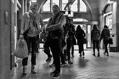 Haarlem, Netherlands - Street Photography (Laario) Tags: street city people haarlem nikon nederland streetphotography cityscapes stedelijk stad straat mensen stadsgezichten straatfotografie d700 nikond700 wwwlaariocom