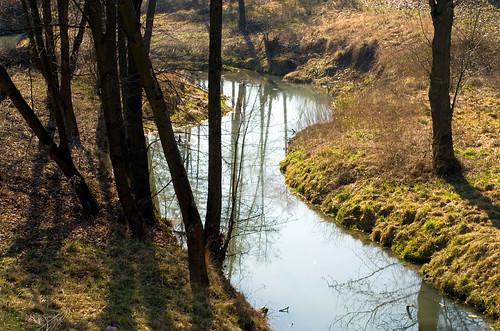 Potok w Nowym Wiśniczu 01