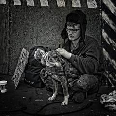 Some Things Are More Important Than Others, Dupont Circle, Washington, DC (Gerald L. Campbell) Tags: street portrait bw dog washingtondc blackwhite dc homeless streetphotography squareformat dcist spirituality spiritual dupontcircle alienation panhandling homelessness spiritualindifference spiritualalienation canonsx50hs