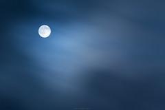 The full moon is calling... (Tarek_Mahmud) Tags: moon night bangladesh tmp tarek trk 2015 mhd tarekmahmud trkmhd tarekmahmudphotogtaphy thebuckmoon