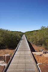 Into the mangroves (Stueyman) Tags: jetty sony australia mangrove wa 1018 westernaustralia broome streeter a6000