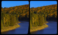 Indian Summer in Ontario 3-D / Stereoscopy / Crossview / HDR / Raw (Stereotron) Tags: north america canada province ontario indiansummer autumn fall forest woods landscape outdoor outback backcountry lake river creek tree plants crosseye crosseyed crossview xview cross eye pair freeview sidebyside sbs kreuzblick 3d 3dphoto 3dstereo 3rddimension spatial stereo stereo3d stereophoto stereophotography stereoscopic stereoscopy stereotron threedimensional stereoview stereophotomaker stereophotograph 3dpicture 3dglasses 3dimage hyperstereo twin canon eos 550d yongnuo radio transmitter remote control synchron kitlens 1855mm tonemapping hdr hdri raw 3dframe fancyframe floatingwindow spatialframe stereowindow window