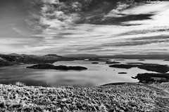 Loch Lomond (AdMaths) Tags: adammathesonphotography adammatheson lochlomondnationalpark lochlomond loch lochs luss lumixfz150 lumix panasoniclumixfz150 fz150 dmcfz150 panasonic bridgecamera islands beinndubh hill lusshills blackhill graham mono monochrome blackwhite bw blackandwhite inchlonaig islandoftheyewtree scotland scottishlandscape scottish scenery scene scottishscenery scottishmountain landscape island landscapebritish britishlandscape