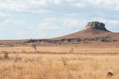 Sur la route de l'Isalo (Masta Panda) Tags: madagascar western plaine caillou rock herbes grass hill colline