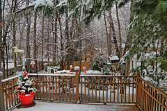 Back Deck and Yard (hbickel) Tags: backyard deck photoaday pad canont6i canon snow pinetrees snowstorm trees