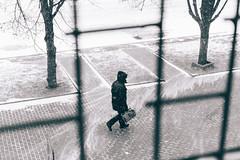In the black frame (odwalker) Tags: black blackwhite blizzard cold man monochrome pavement pedestrian people silhouette snow snowfall street streetphoto streetphotography view white window winter