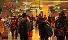 Doha Airport 4 (David OMalley) Tags: qatar doha airport hamad international