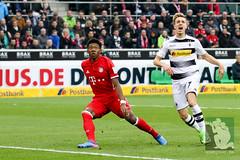 Gladbach vs Bayern München-50.jpg (sushysan.de) Tags: bayern bayernmünchen borussiamönchengladbach bundesliga dfb dfbpokal dfl fohlen gladbach mgb münchen pix pixsportfotos saison20162017 vfl1900 pixsportfotosde sushysan sushysande