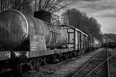 Train Américain 1930 (Arnaudphoto1412) Tags: train américain wagon noiretblanc nb blackandwhite bw belgique