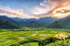 Cao Pha valley, Mu Cang Chai (trocphunc) Tags: agriculture asia asian cang chai curve environment farm field green harvest horticulture land landscape mountain mu nature plant rice rough sapa season terrace terraced travel valley vietnam water