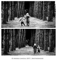 Brotherhood (Andrea Lanzilli) Tags: brotherhood fuji xpro2 90mm f2 forest brother sister black white italy abruzzo andrea lanzilli