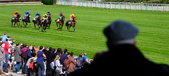 GAF photo-3.jpg (GAF photo) Tags: auteuil courseshippiques