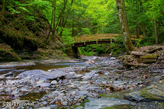 Fillmore Glen Gorge Trail (rugby4all) Tags: bridge nikon woodenbridge moraviany d90 fingerlakesregion gorgetrail fillmoreglenstatepark nikon1855mmf3556gedafsdx