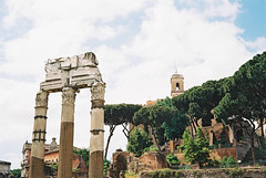roman forum (Andrew Ridley) Tags: travel sky italy sun rome color colour roma tree film clouds analog 35mm spring ancient ruins europe italia kodak roman forum may column analogue yashica romanforum yashicaelectro35 yashicaelectro35gx 2013 kodakektar100