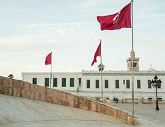 (Giuseppe Portuesi) Tags: square wind flag tunis palace tunisian