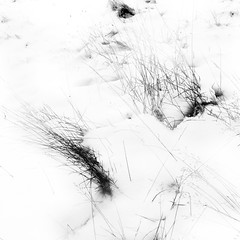 Snow Abstractions 3 (ChrisdMRF) Tags: park uk greatbritain blackandwhite bw snow abstract london monochrome grass landscape mono blackwhite britishisles unitedkingdom richmond surrey gb highkey richmondpark 2013