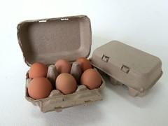 กล่องไข่กระดาษ pulp mold egg box-1